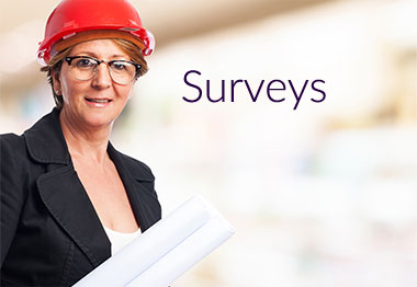 Survey-Services.jpg