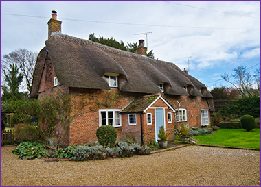 thatched roof building survey - Thatched Rood